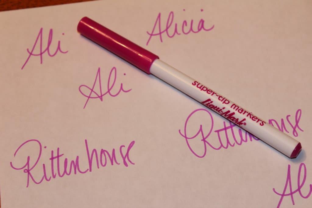 Essay writers name