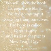 My 2014 Reflection to Welcome in 2015!
